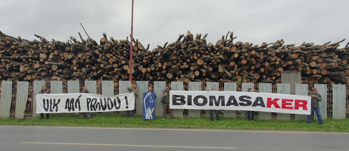 People are standing up for forests.